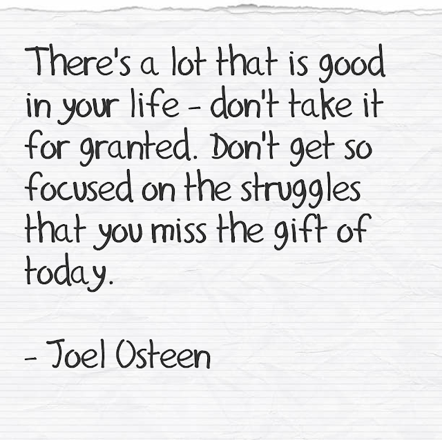 There´s a lot that is good in your life - don´t take it for granted. Don´t get so focused on the struggles that you miss the gift of today. - Joel Osteen