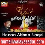 http://www.humaliwalayazadar.com/2014/10/hasan-abbas-naqvi-nohay-2015.html