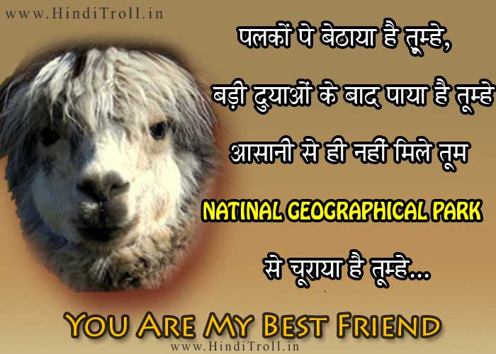 FUNNY HINDI COMMENTS/QUOTES WALLPAPER ON FRIENDSHIP