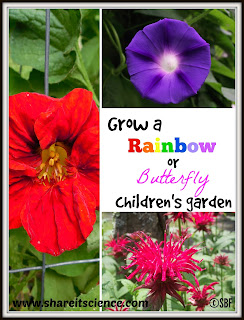 Grow a Rainbow or Butterfly Children's Garden DIY
