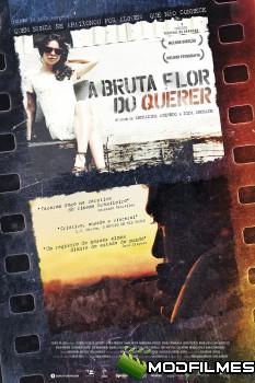 Capa do Filme A Bruta Flor do Querer