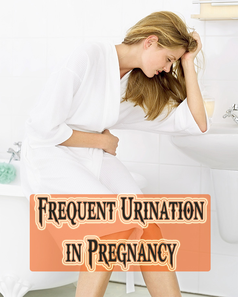 Frequent Urination in Pregnancy