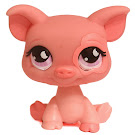 Littlest Pet Shop Gift Set Pig (#926) Pet