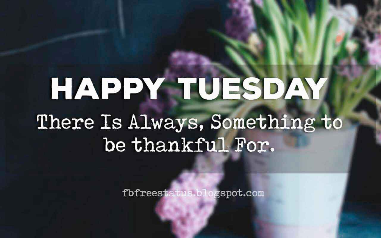 Good Morning, Happy Tuesday there is always, something to be thankful for.