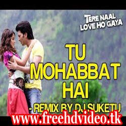 tu mohabbat-hai lyrics