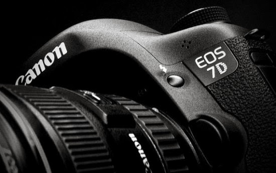 Michael Daniel Ho - The Wildlife Ho-tographer: Canon EOS-7D Mk II Launching In Q2 2014