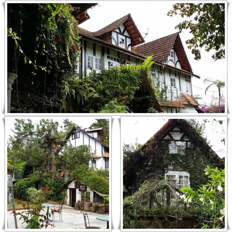 Betul Tak Cakap Saya Rumah English Style Mesti Ada Daun Jurai Tu Je Dah Cover Dinding Malah Juga Lumut Serta Tumbuhan Renek Menjalar