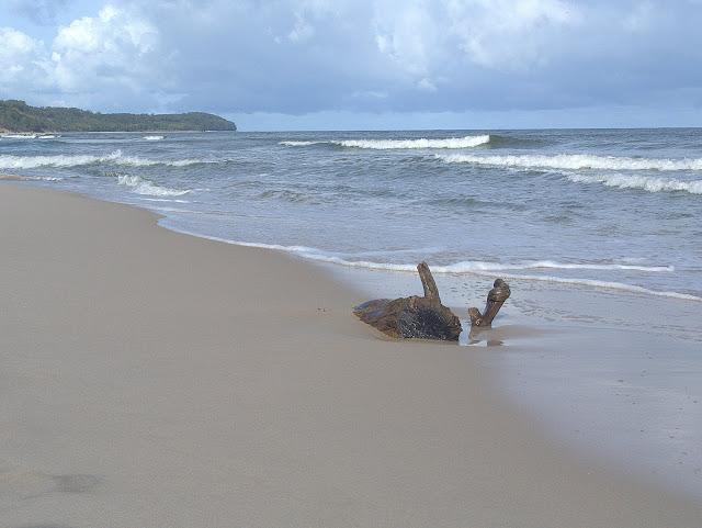 plaża Władek, sztork na morzu