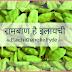 इलाइची खाने के फायदे - Cardamom(Elaichi) Benefits in Hindi