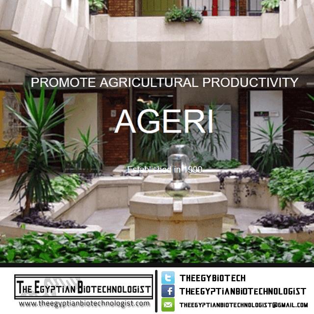 معهد بحوث الهندسة الوراثية الزراعية - AGERI