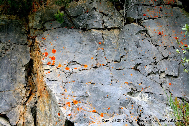 A view of the large rock along the trail with surface cracks and rusty orange lichen.