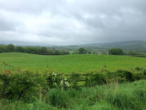 Rainy Wales countryside