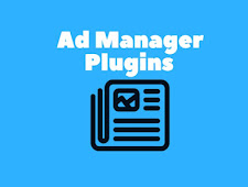 The Best Plugins For Management Advertising In WordPress