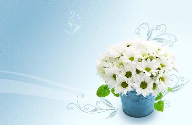 تحميل خلفية أعراس زهور بيضاء مفتوحة للفوتوشوب, PSD White Floweral Wedding Packground