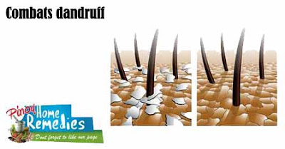 Combats Dandruff