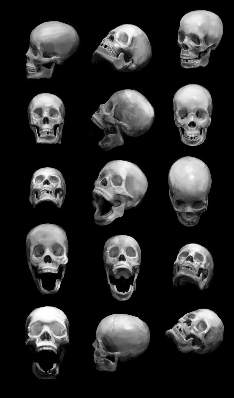 [Image: 2013_01_07_fem_skulls_render_1_fin.jpg]