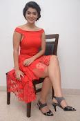 Yamini bhaskar new glam pics-thumbnail-5