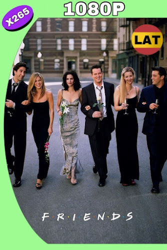 FRIENDS (1994-2004) SERIE COMPLETA BRRIP 1080P LATINO-INGLES MKV