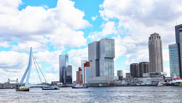 Rotterdam skyline erasmusbridge maas river