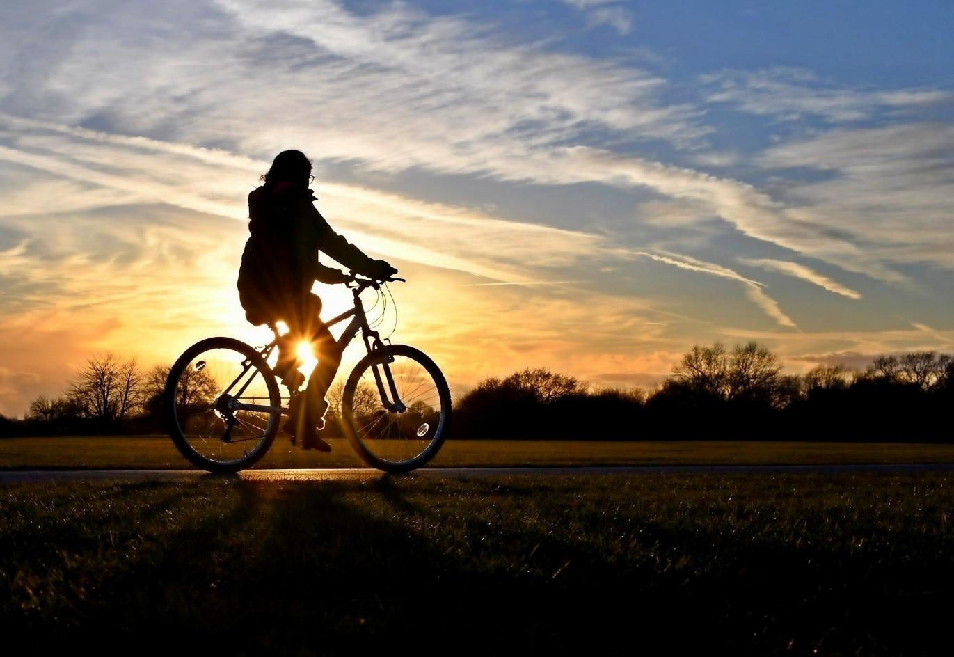 The_cyclist%255B1%255D.jpg