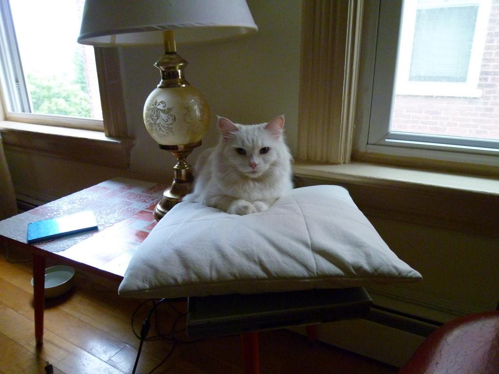bread story flea flashback fl r iday. Black Bedroom Furniture Sets. Home Design Ideas