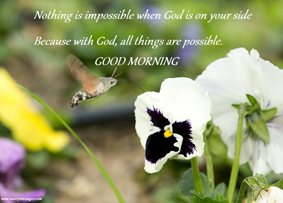 Best messages for good morning beautiful messages nothing is impossible when god is on your side because with god all things are m4hsunfo