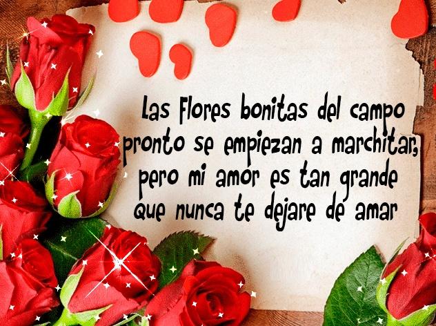 Un bonito mensaje de San Valentín