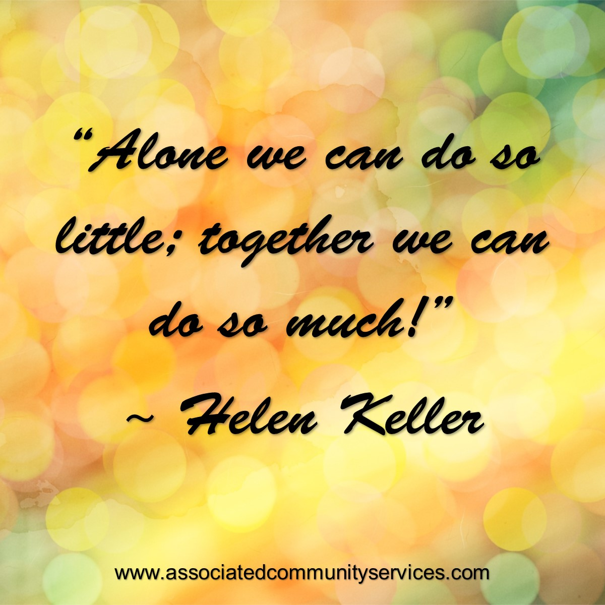 Acs Professional Fundraiser Alone We Can Do So Little Together We