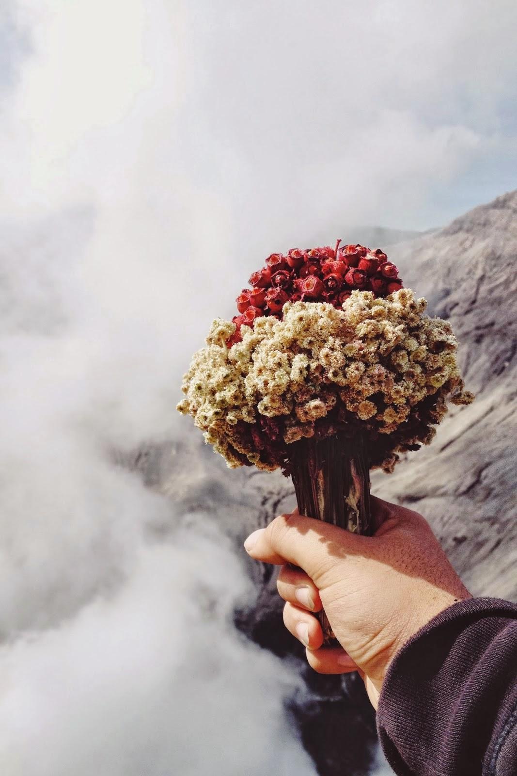 Foto Keren Memegang Bunga