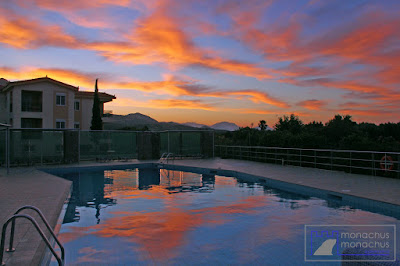 Monachus Monachus Apartments - Pool Sunrise