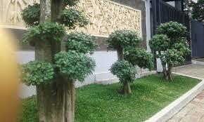 jasa buat taman rumah cantik jakarta