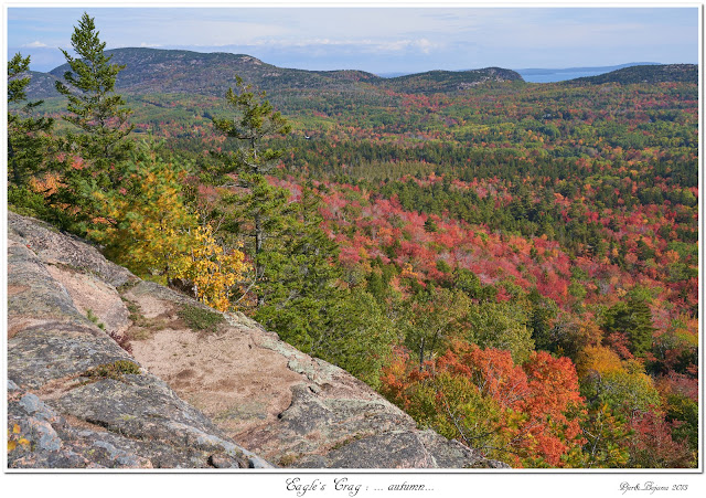 Eagles's Crag: ... autumn...