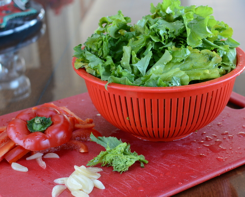 Running Round Up Broccoli Rabe Aka Rapini
