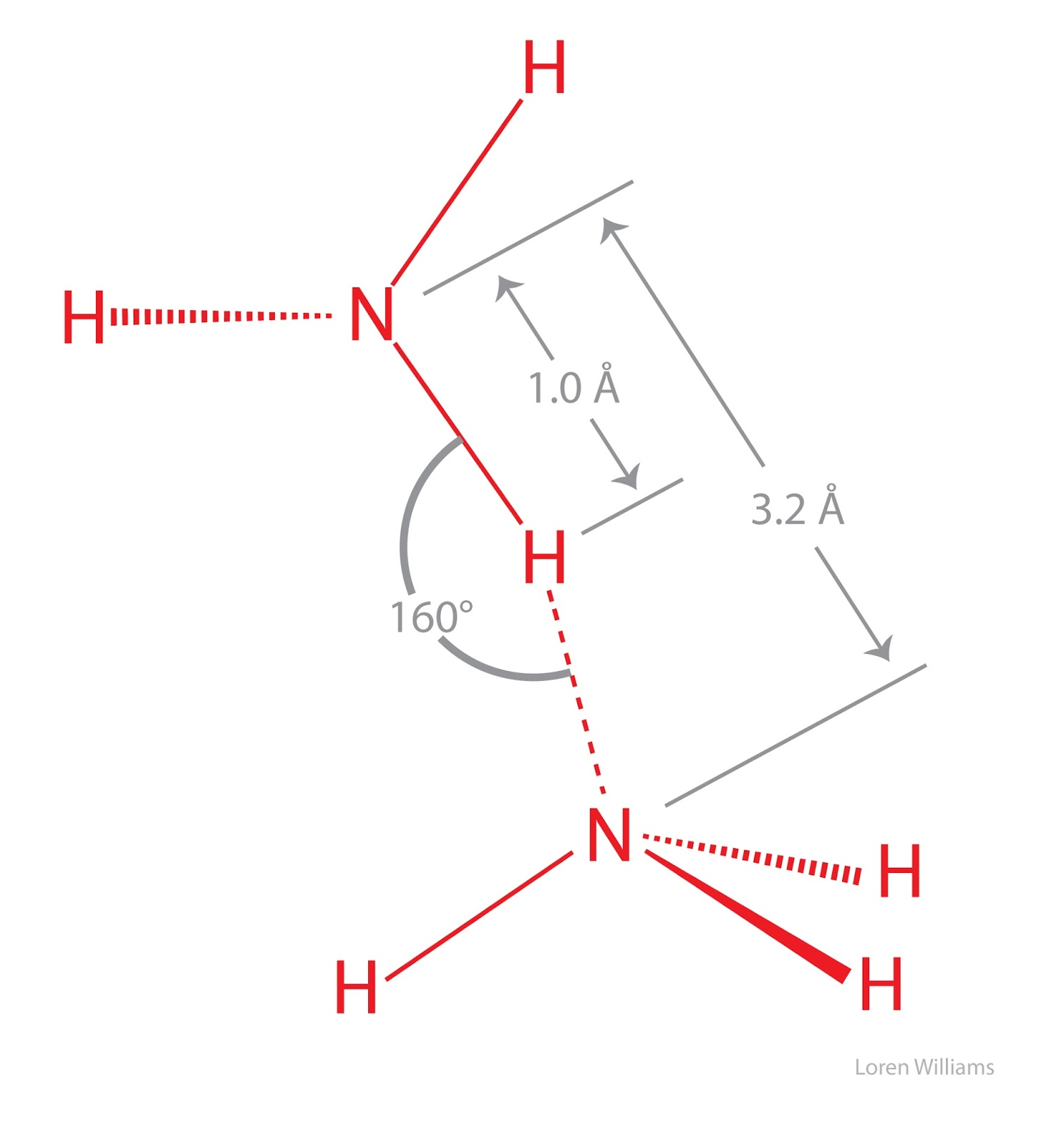 Savvy Chemist Intermolecular Forces 3 Hydrogen Bonding