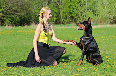 Mexican Dog Breeds, Mexican Pet