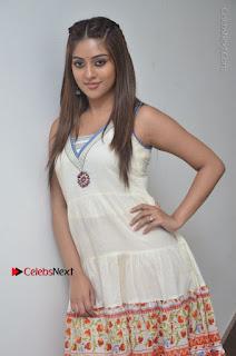 Telugu Actress Anu Emmanuel New Stills in Beautiful White Long Dress  0018.JPG