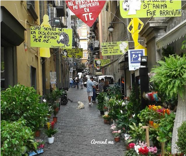 Strada con piante e fiori