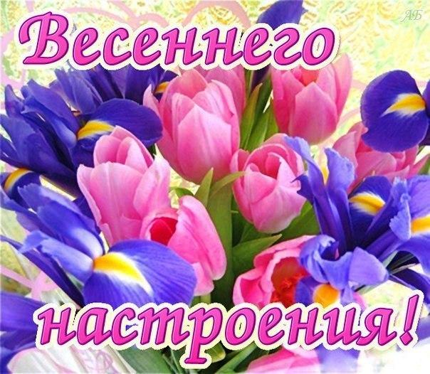 Поздравления днем, открытка весенне настроение
