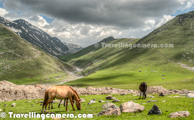 Peer Ki Gali is an amazing place on old Mughal road in Jammu & Kashmir State of India. This place is the highest passes on Srinagar Rajouri historic Mughal Road at 11300 Feets... Let's check out this Photo Journey to know more about this place with appropriate photographs...Various water streams can seen flowing through snow covered peaks of Peer-Ki-Gali hills. Cool freeze, freshening environment and roaming clouds all over makes this place wonderful. After talking to various folks at Peer ki Gali, we got to know that almost every day it rains on these hills. We spent two days around it and we also experienced rain showers both the days...Here is a photograph of a shopkeeper inside his small shop made up of stones. He had almost everything that is usually required for routine life in hills. These families come to these high hills with their cattle, as this place has got more than enough grazing land which becomes a problem during a particular time of the year. Ziarat of Peer Baba on hill top has gained its popularity. Almost every vehicle passing by Peer-ki-Gali stops here to enjoy the panaromic view as well as to take blessings of Peer Baba. Green layer on Peer-Ki-Gali hills looks amazing and it's a huge range of hills with green meadows...Shepherd sitting in these green hills around Peer ki Gali... Almost every alternate hill was full of sheeps and horses... This trend was only noticed around Peer-Ki-Gali on Mughal Road...In past this place have been of great interest for trekkers and now easily accessible for others as well. Tourism is picking up in this region of Jammu and Kashmir now. This will not only boost the economy of the state but also open new aspects to the residents.CRPF folks can seen here and there around these hills to make every person safe on these hills around Peer ki Gali. Really these folks are working really well to give confidence to common people to enjoy the beauty around Mughal Road.Sheeps all around in green hills of Peer Ki Gali, Kashmi