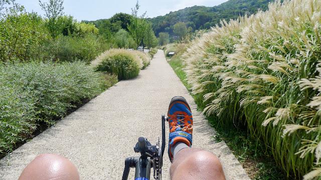 De Paris à Narbonne en vélo, piste en bords de Saône