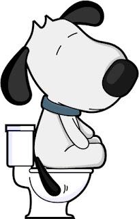 veterinaria online colitis en perros