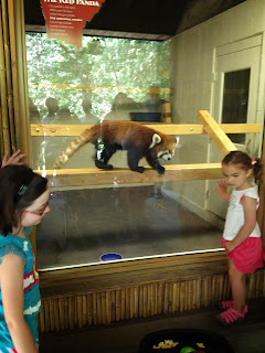 Pittsburgh Zoo!