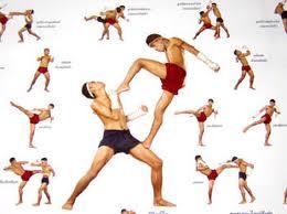 priemy tajskogo boksa