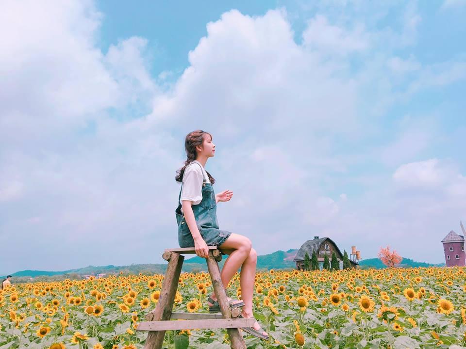 Giới trẻ 'phát sốt'' với vườn hoa hướng dương tại Bắc Giang -5