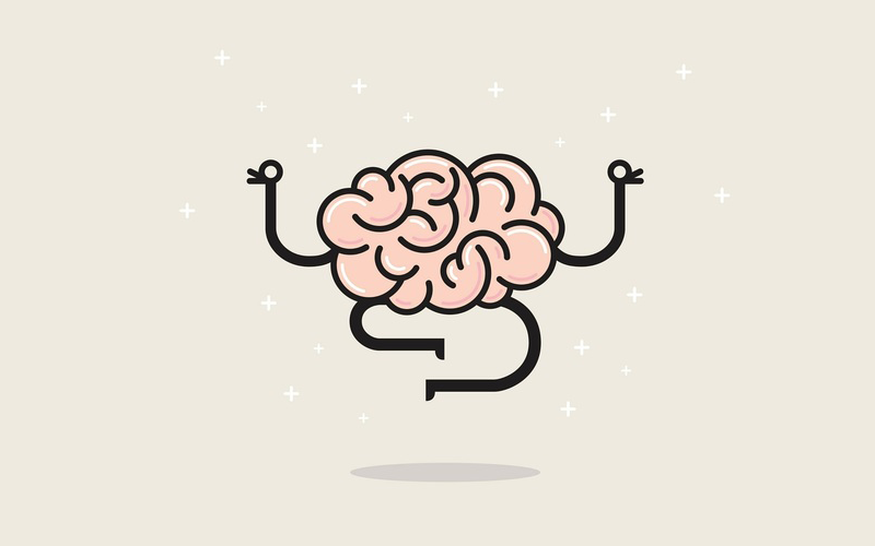 How does the brain change after 2 years of meditation? 4