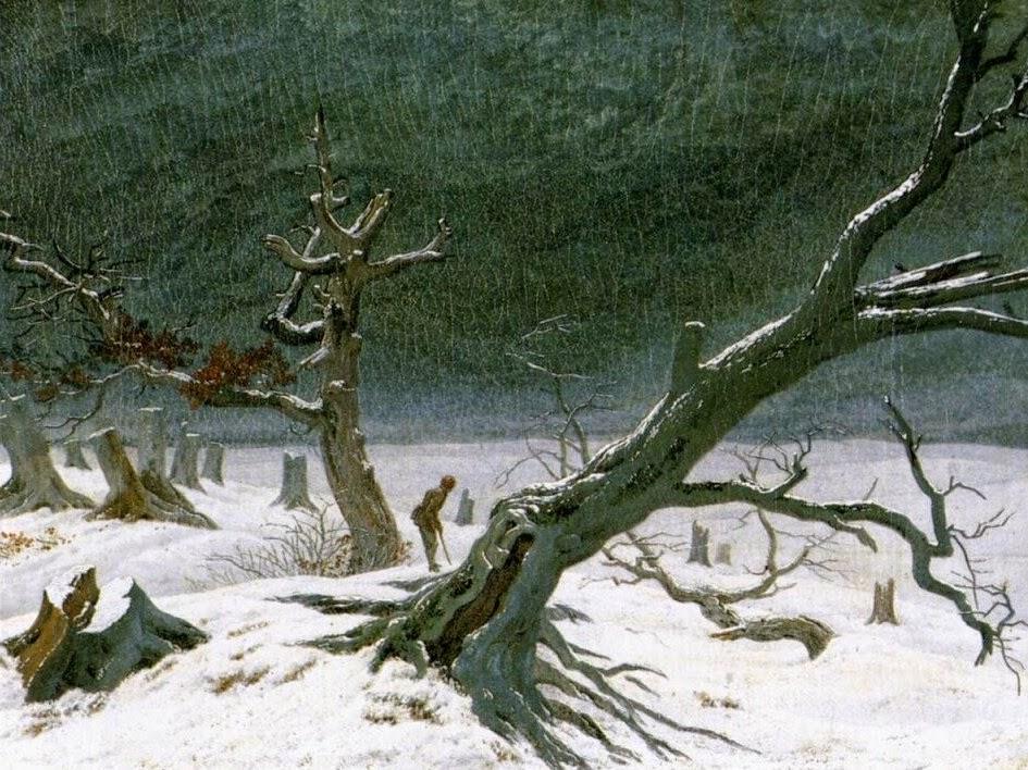Athenae Noctua Inverni ad arte la natura innevata