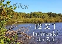 http://staedtischlaendlichnatuerlich.blogspot.de/2016/11/montag-31-oktober-2016-im-wandel-der.html