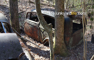 Moving the 1934 Ford was a challenge because of all the trees.