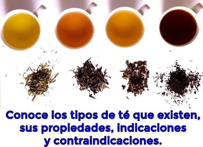 Tipos de té y propiedades nutricionales que mejoran la salud