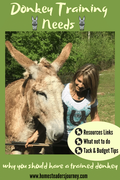 Donkeys need a certain amount of training to be handled easy and safely. Donkey Training needs tips and resource links!